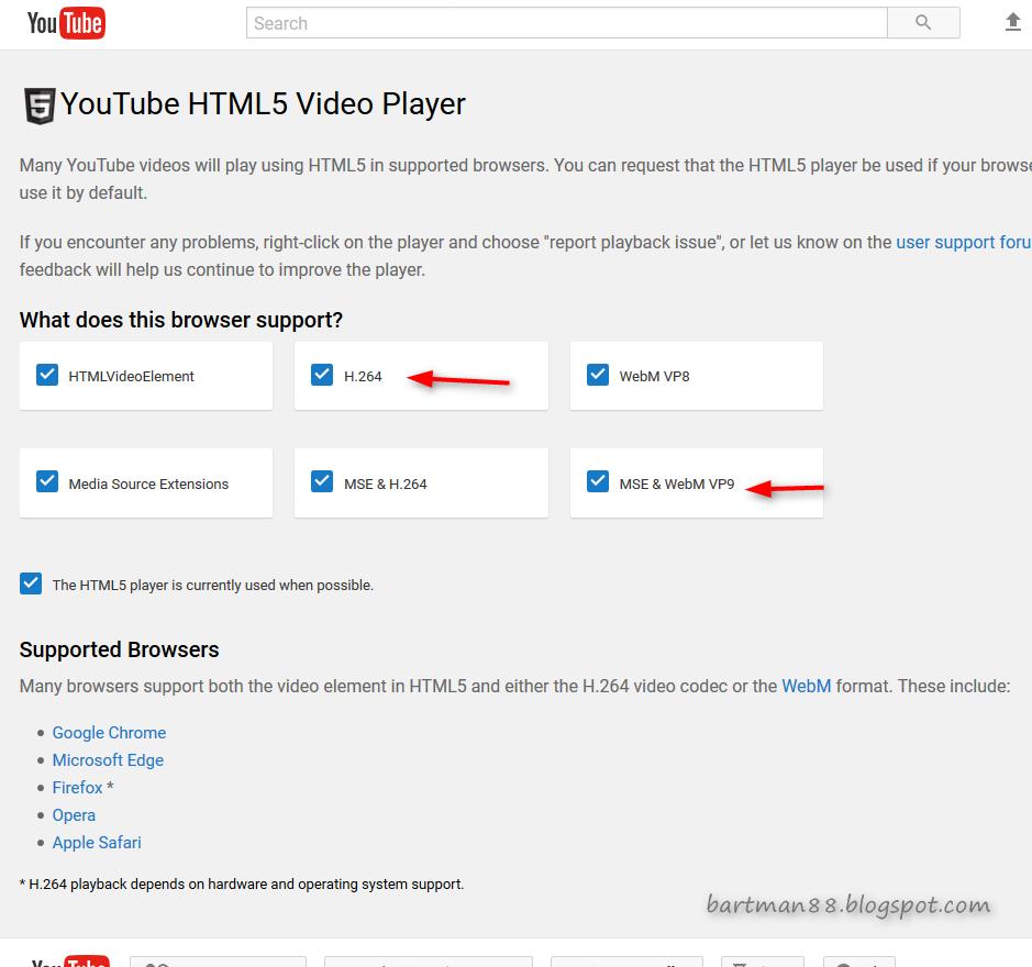 Видеокодек h 264 или формат webm скачать