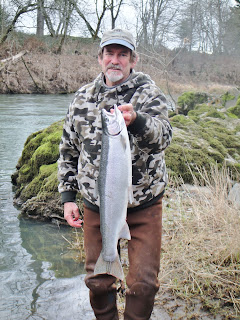 winter steelhead