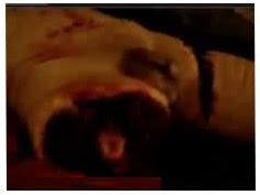Image de la video