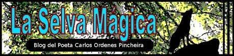 La Selva Mágica