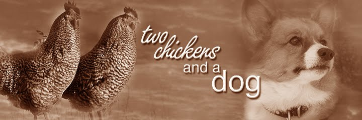 two chickens and a dog