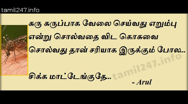 Funny thoughts about mosquito in tamil, erumbu vs kosu comedy, mokka posts in tamil, tamil jokes, funny comments in tamil on facebook, whatsapp, share on twitter.