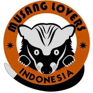 Muria Musang Club Perawatan Pada Musang Biul Javan Ferret Badger