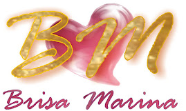 LOGO BRISA MARINA