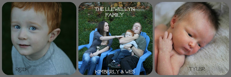 The Llewellyn Family