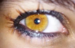 Dejame ver a traves de tus ojos