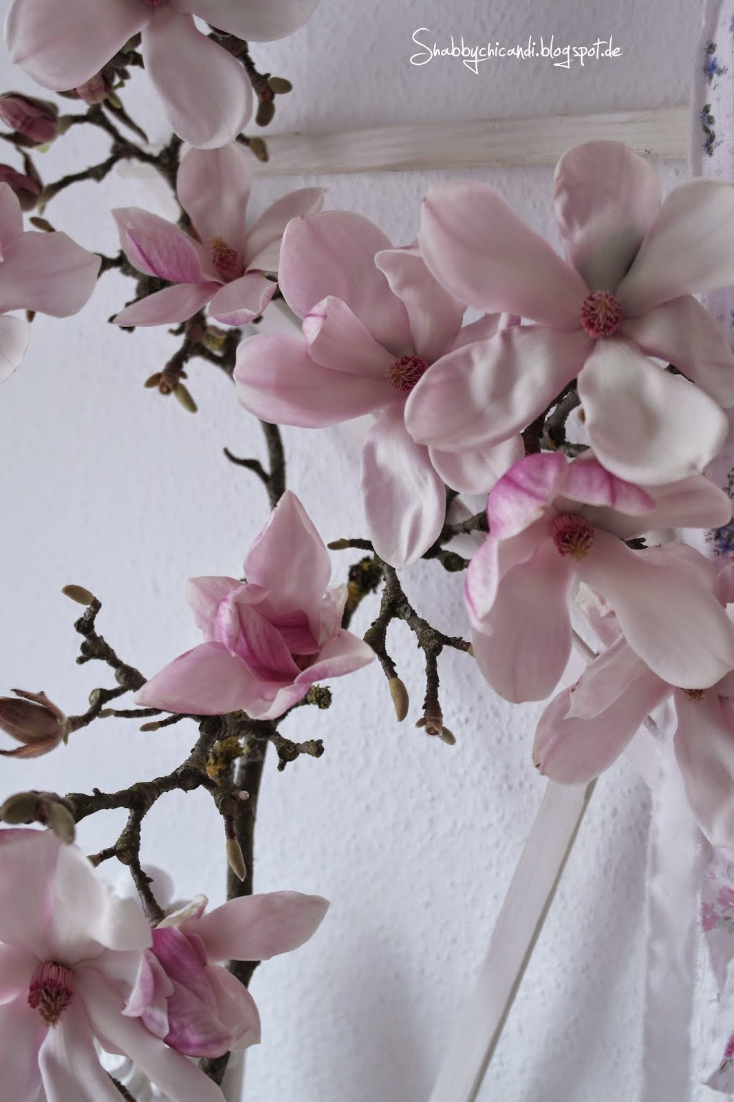 Magnolienzweig....wunderschön zur Shabby chic Dekoration