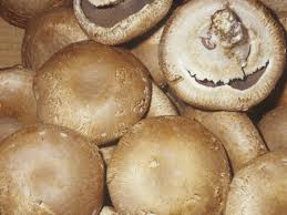 Commercially harvested wild edibles Mushrooms
