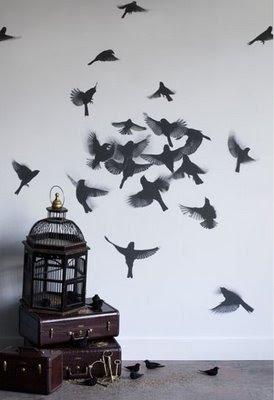 Super Star Photo Bird Wallpaper For Walls