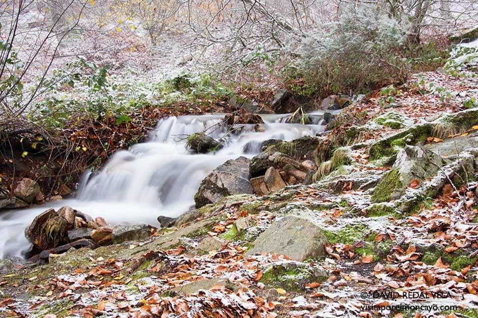 Montaña Moncayo Dia Internacional de Montaña Naturaleza
