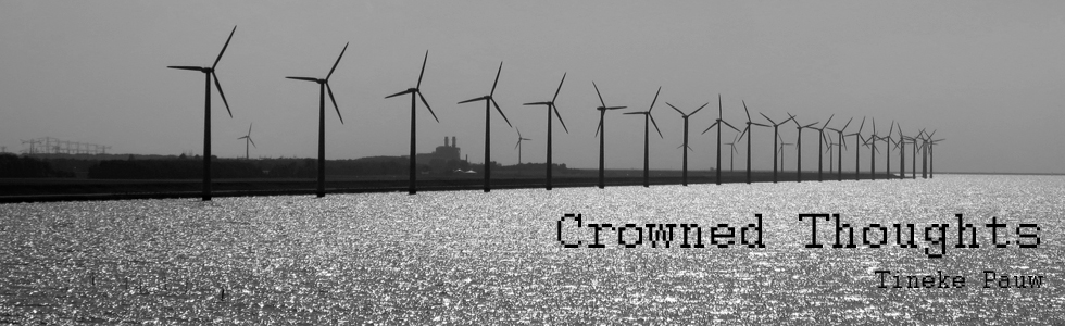 Crowned Thoughts - over Online Community's, Cocreatie en Nieuwe Media