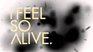 feel alive, love life, positive quotes
