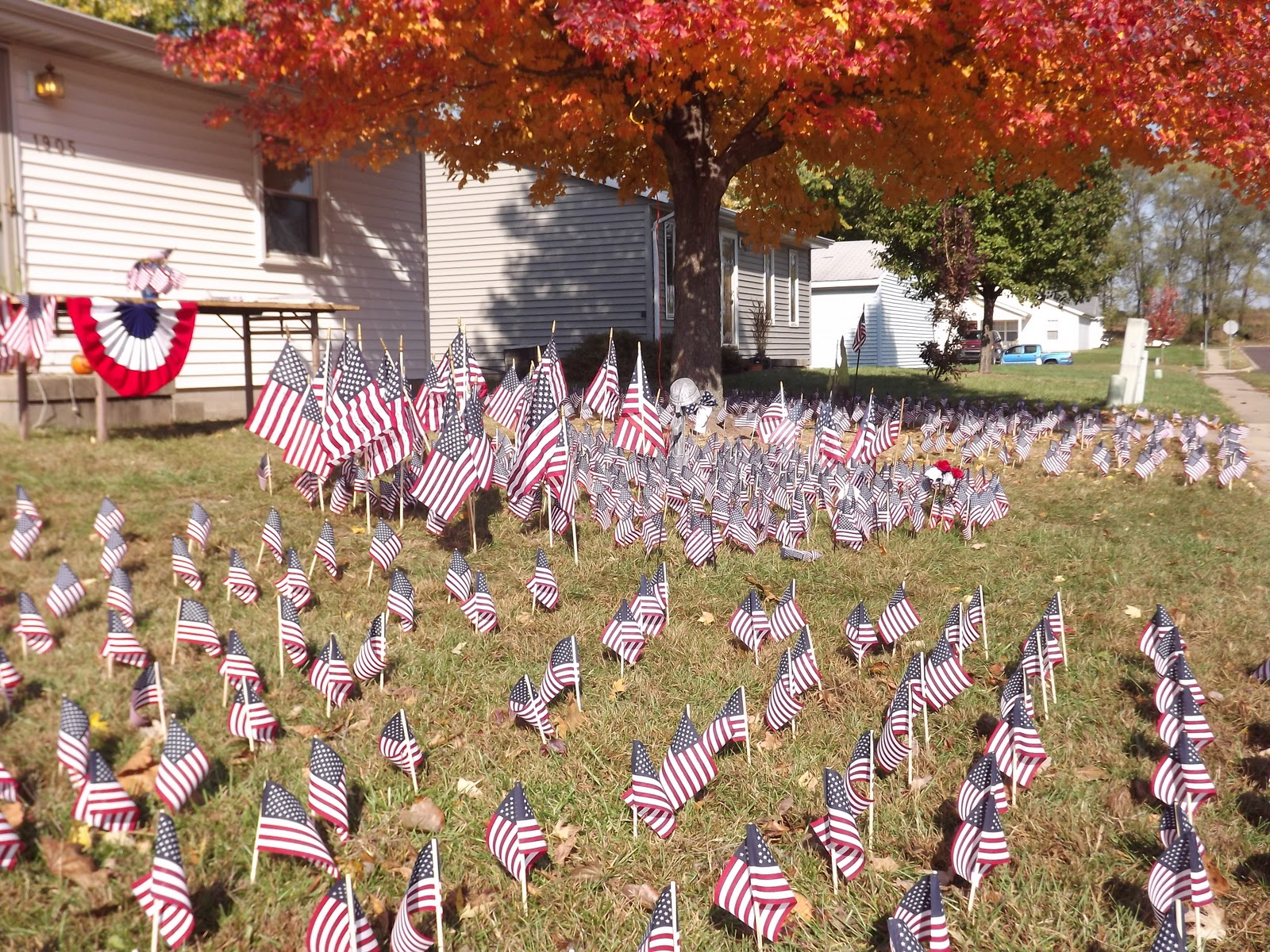 american flags in yard