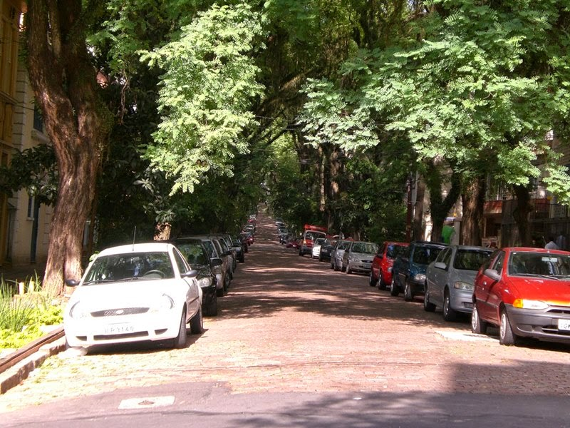 Rua Goncalo de Carvalho, Brazil | The most beautiful avenue in the world