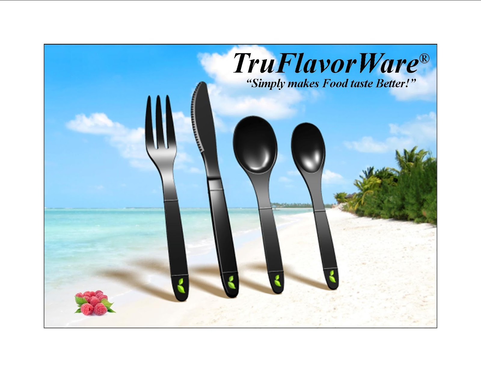 Best Reviews: Absolutely Amazing Non-metallic TruFlavorWare Eating ...