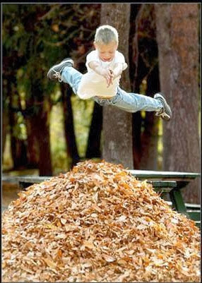 Boy Jumping on Leaves