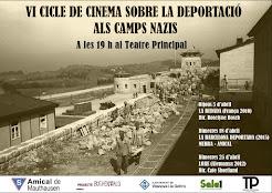 VI Cicle de Cinema