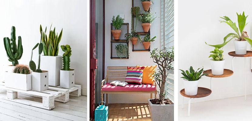 Nemulsa design 9 propuestas para organizar tus plantas for Estanteria plantas interior