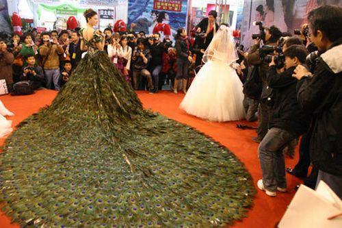 فستان زفاف صنع من 2009 ريشة طاووس وبيع بـ