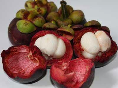 Manfaat buah manggis untuk kesehatan manusia