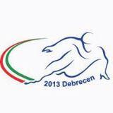 PATINAJE DE VELOCIDAD-Mundial Debrecen 2013