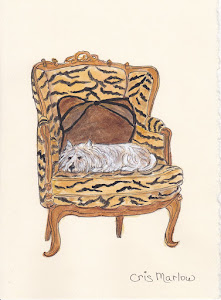Westie on Tiger chair