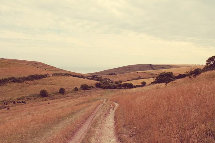 path from worth matravers to winspit