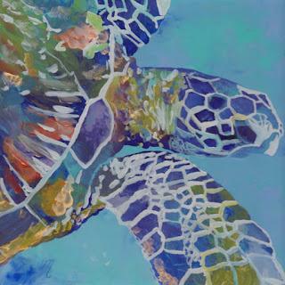 Kauai turtle honu sea turtle Hawaii ocean