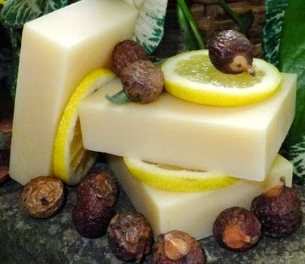 shampoo barra