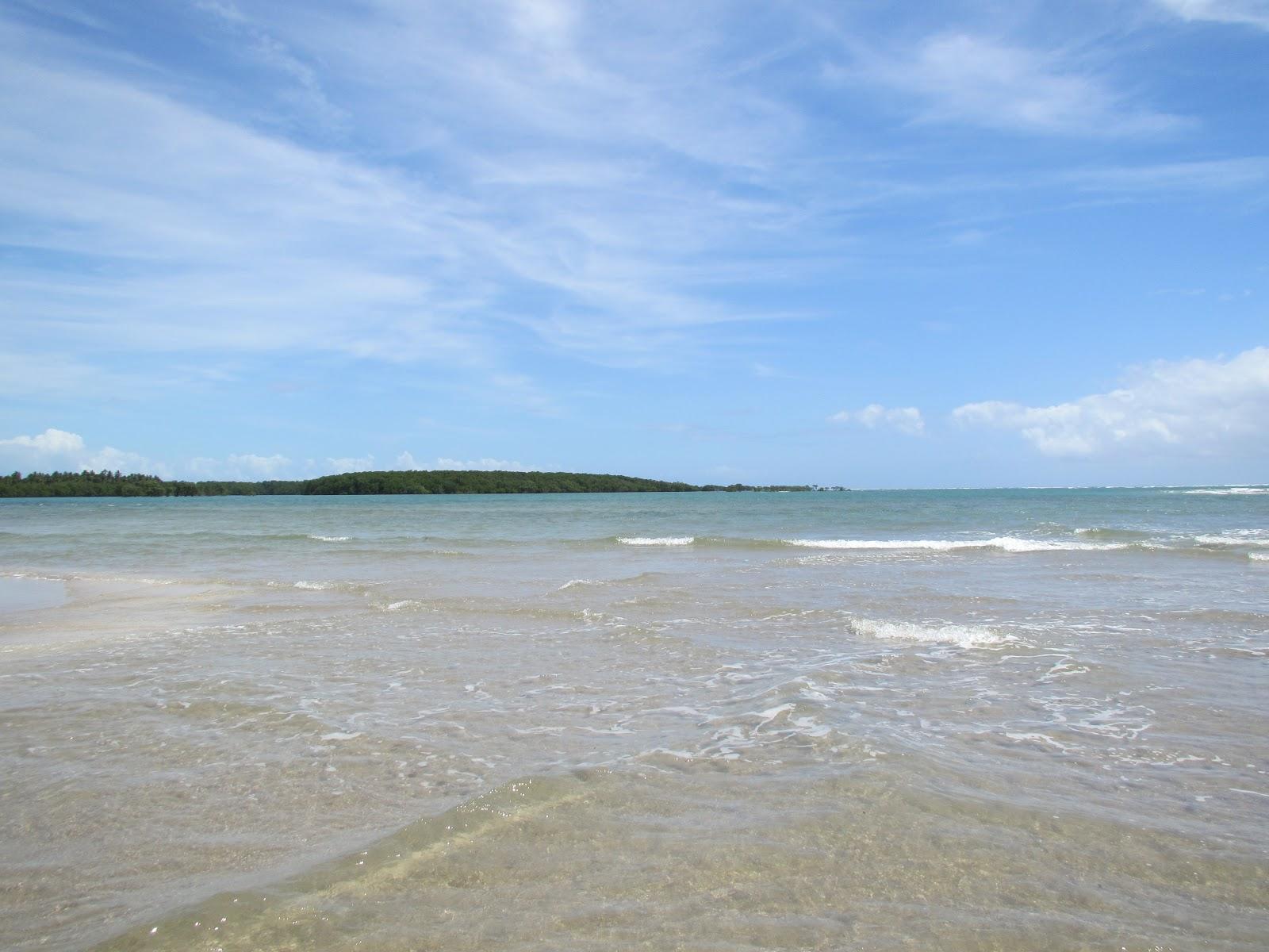 Lost Brazilian Beach Paradise