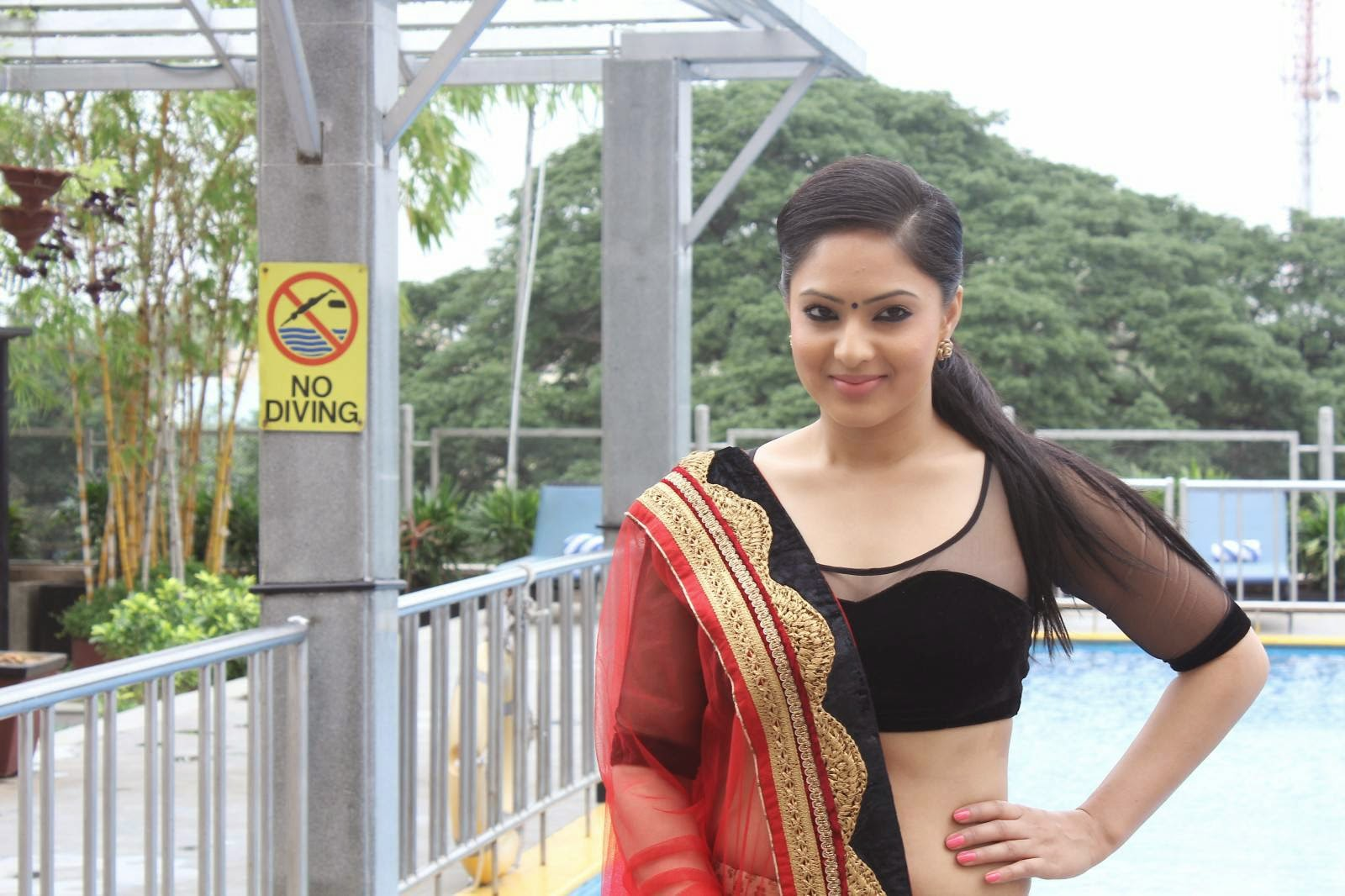 Nikesha patel glamorous photos-HQ-Photo-2