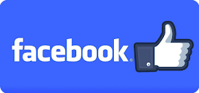 Segueix els Delai per Facebook