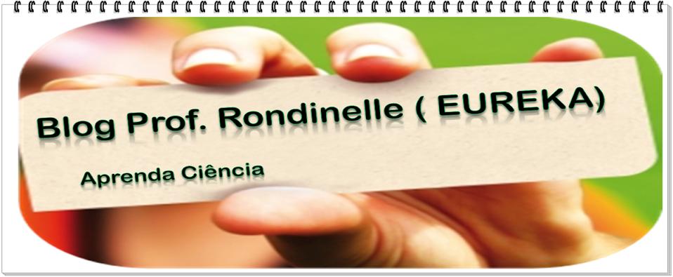 Blog Prof Rondinelle(EUREKA)