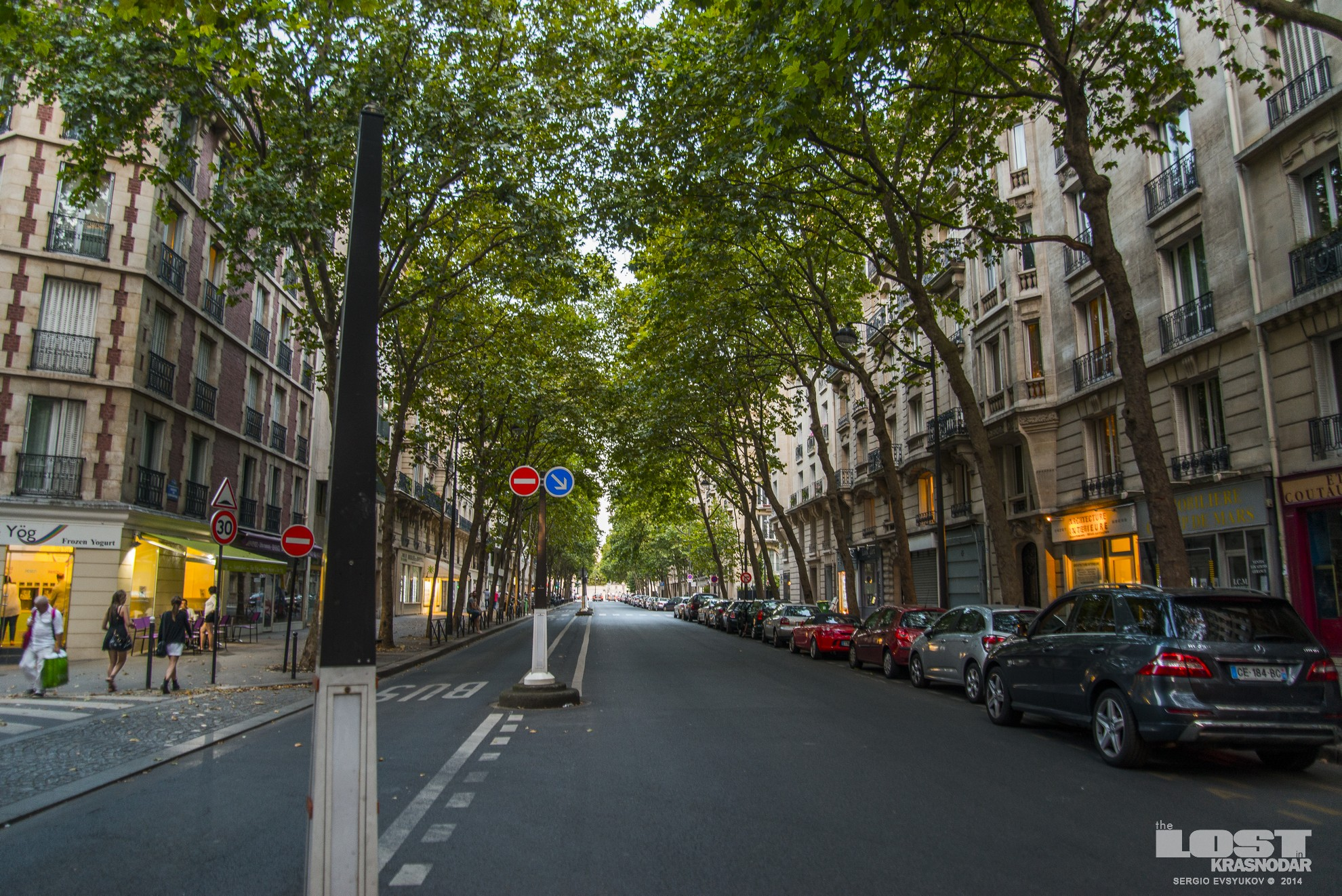 Paris Street with trees