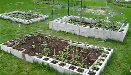 Honey & Butter: Making a Cinder Block Raised Bed Garden