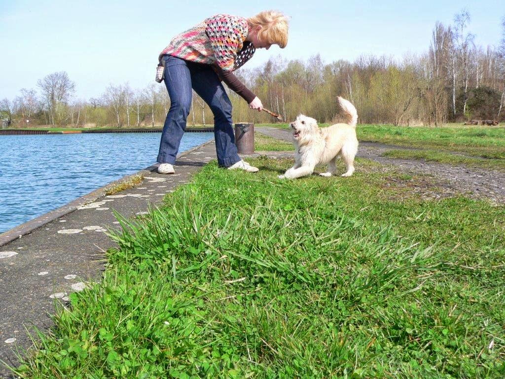 Depression kleine Schritte Kanal Dortmund Frühling Antidepressiva Hund Spielen
