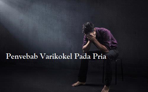 http://infoprodukgreenworld.blogspot.com/2015/04/penyebab-varikokel-pada-pria.html