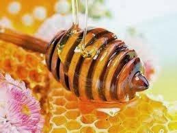 manfaat madu untuk tubuh
