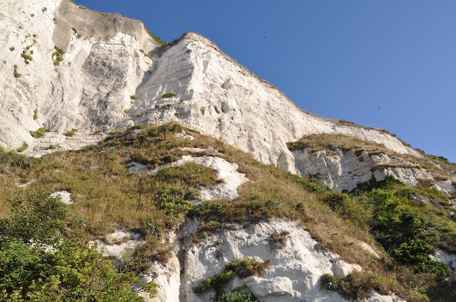 E+Cliff+Path+to+Dover+White+Cliffs