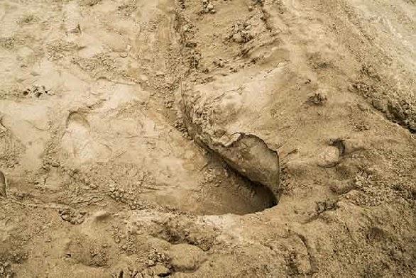 huellas en la playa de lima