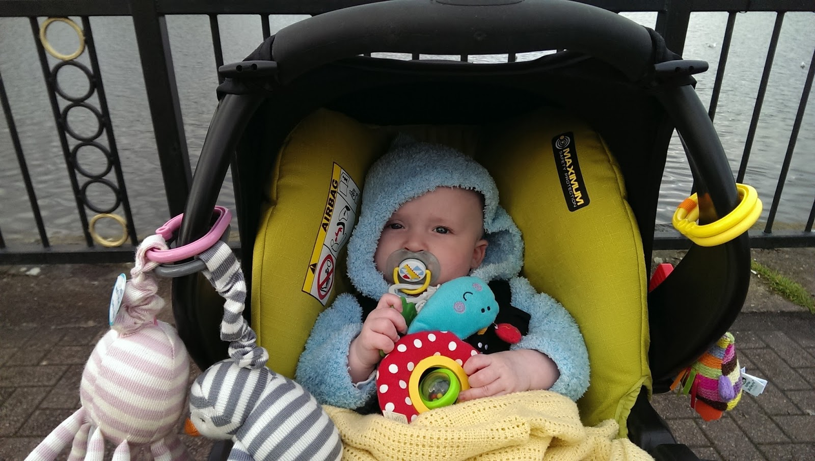 Squidge at Roath Lake at 4.5 months old