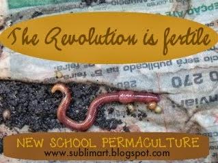 Free Seeds