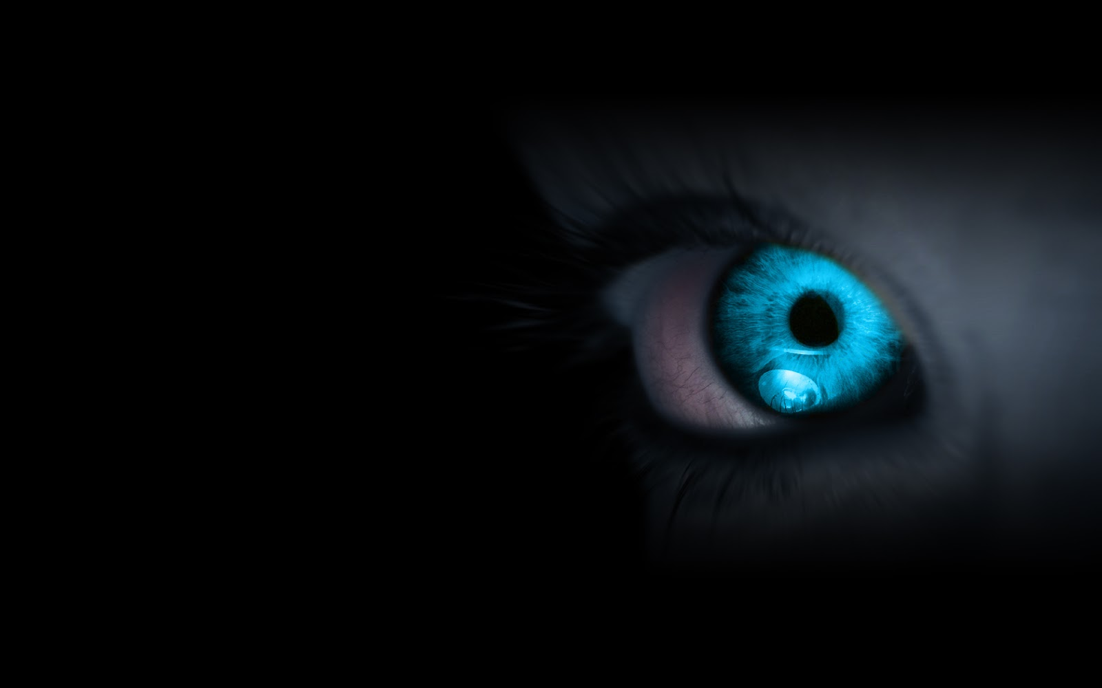 http://4.bp.blogspot.com/-WKvbKsHE20k/UIm-ncvkr0I/AAAAAAAACos/V2hhBS6ZBGA/s1600/Un+ojo+azul+en+la+oscuridad.jpg