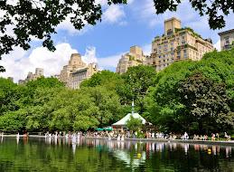 Pond at Central Park