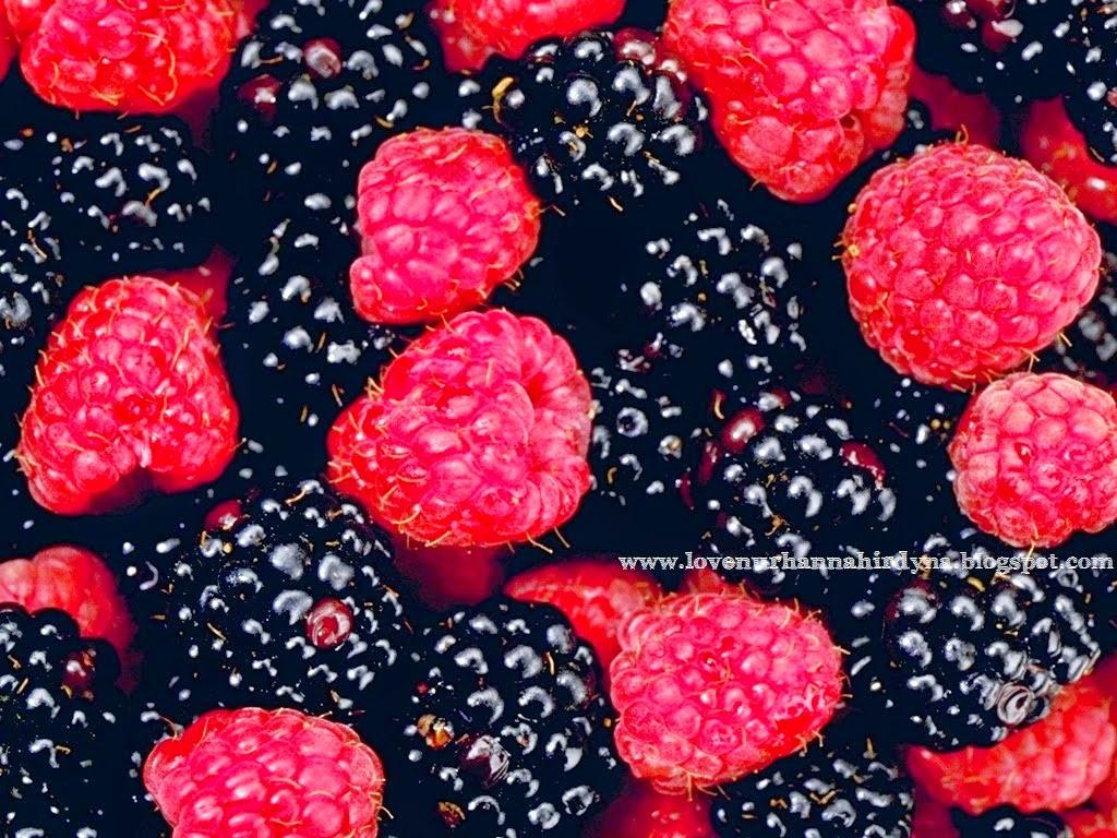 manfaat buah mulberi