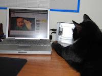 Cara Upload Video di Facebook Dapat Uang Terbaru