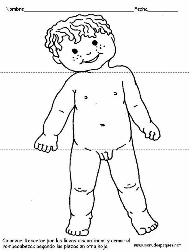 Dibujos Del Cuerpo Humano Para Ninos