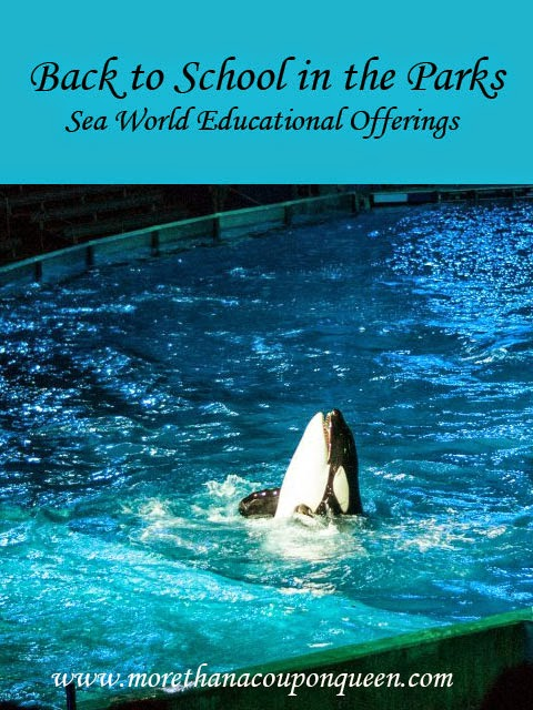 Back to school in the Parks: Sea World Educational Offerings