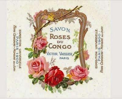 Roses du Congo