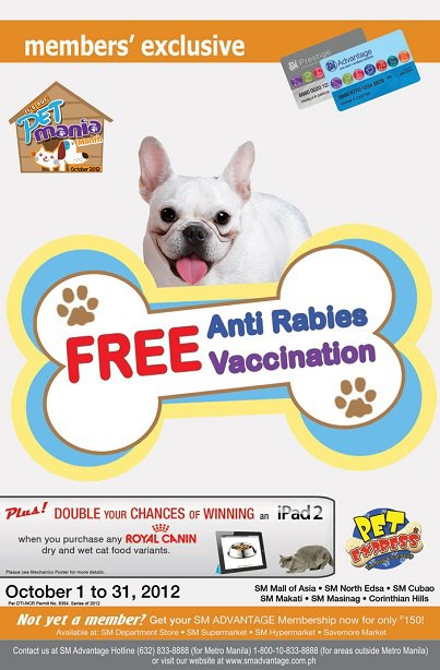 blog travel medicine issue rabies vaccine southeast asia necessary